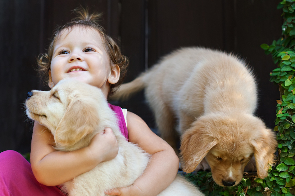 how to attract customers with cute babies and pets
